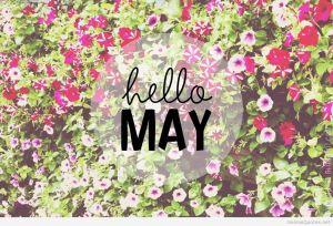 hd-wallpaper-hello-may-free-use